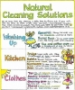 Liz Cook Wall Chart - Natural Cleaning Solutions