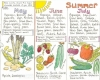 Liz Cook Wall Chart - Seasonal Food Chart