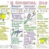 Liz Cook Wall Chart - The 16 Essential Oils